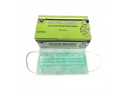 1 Box (50Pcs) 3 Ply Earloop Surgical Disposable Face Mask Block Dust LittleThingy